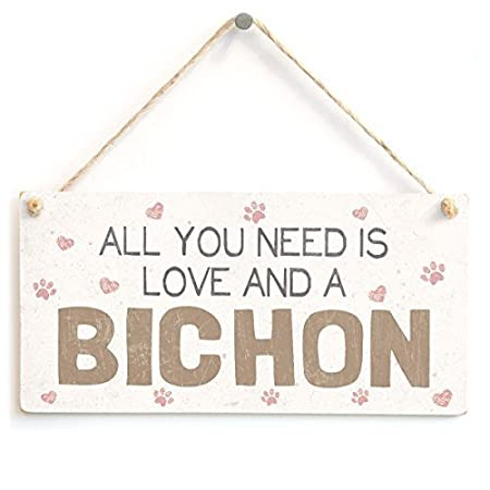 Dtrfloor All You Need is Love and A Bichon - Lindo Accesorio ...