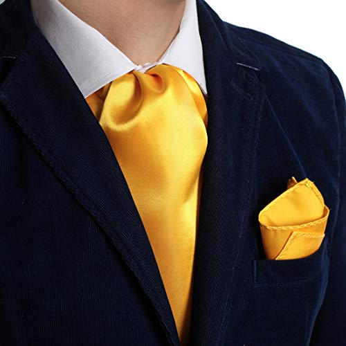 Dan Smith DRC1E01S Orange Plain Microfiber Husband Goods Ascot and Matching Handkerchief ()