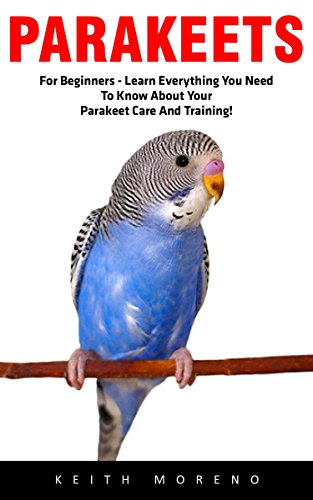 Parakeets: For Beginners - Learn Everything You Need To Know About Your Parakeet Care And Training! (Budgie Care, Parakeet Books, Parrot Training)
