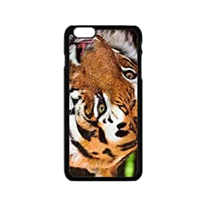 The Walking Tiger On The Snow Hight Quality Plastic Case for Iphone 6