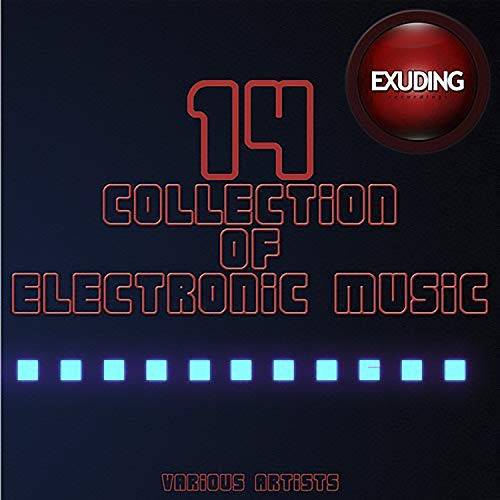 Collection Of Electronic Music, Vol. 14