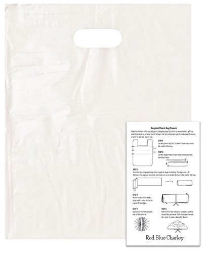 Frosted Die Cut Merchandise Bag (100 Frosted 15x18 Die Cut Handle Bags 2.25 mil with 1 Craft Insert)