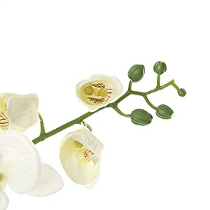 Felice Arts Artificial Flowers 6.6ft 32 Heads Butterfly Orchid Home Decor Fake Flower for Wedding Home Office Party Hotel Restaurant 5
