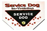 Service Dog In Training Bandana (Up to 30″), My Pet Supplies