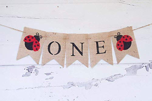 (Ladybug One Birthday Banner | First Birthday Party Decoration)