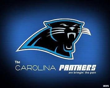 5b982e61 Amazon.com: Carolina Panthers 24X36 Banner Poster RARE #RWF334792 ...
