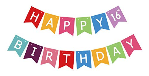 (16th Birthday Banner, Happy 16th Birthday Sign, Sixteen Years Boy Girl Bday Bunting Party)