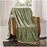 All American Collection New Super Soft Solid Embossed Ashly Throw Blanket (Twin, Sage Green)