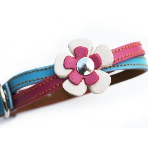 The Cool Puppy Swirl Leather Dog Collar in Blue and Hot Pink Medium (10-12 inches), My Pet Supplies