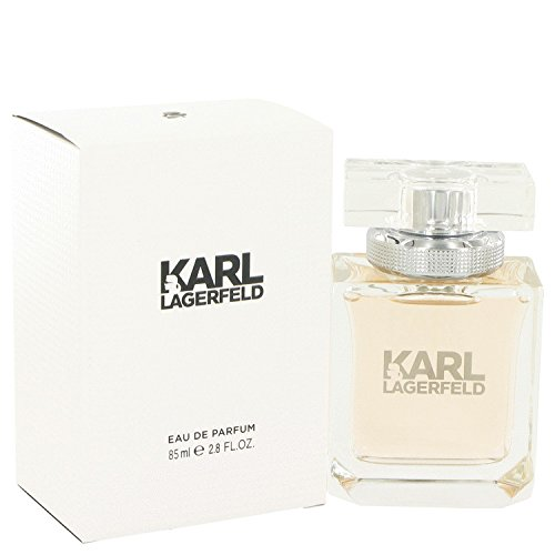 karl-lagerfeld-karl-lagerfeld-eau-de-parfum-roll-on-033-oz-10-ml-for-women-1008-ounce
