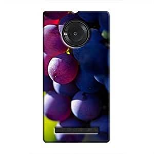 Cover It Up - The Grapes YU Yuphoria Hard case