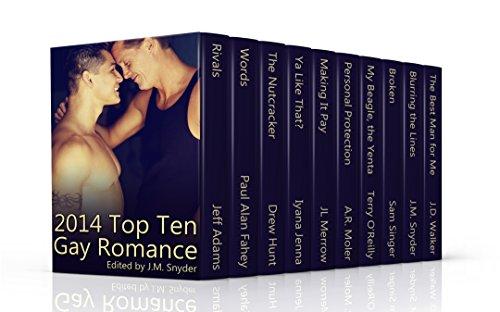 2014 Top Ten Gay Romance