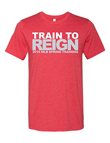 Train To Reign Spring Training 3001 Premium Crewneck T-Shirt Slogan Humorous Heather Red Medium