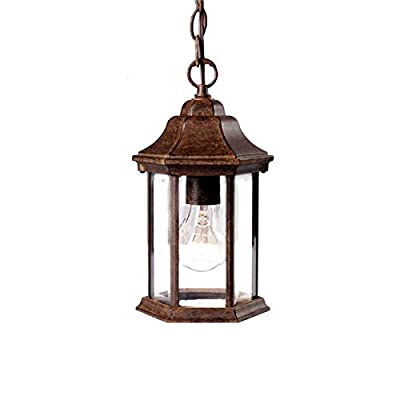 Acclaim 5185BC Madison Collection 1-Light Outdoor Light Fixture Hanging Lantern, Black Coral
