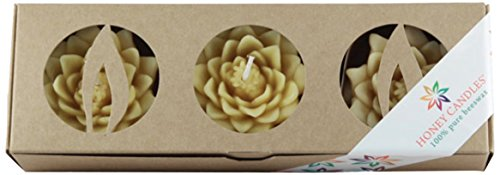 Honey Candles Enlighten Floating Lotus Blossoms Natural Beeswax Candle (Set of 3), 3 Piece