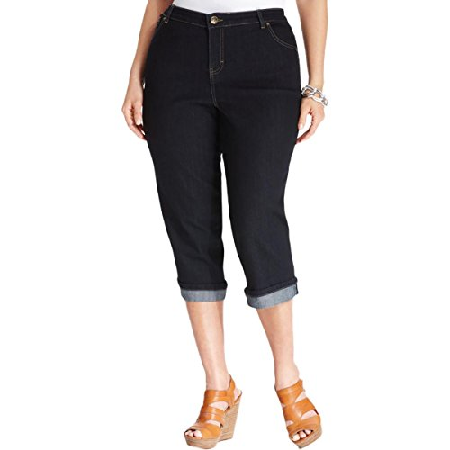 Style & Co. Womens Plus Mid-Rise Dark Wash Capri Jeans Blue 22W