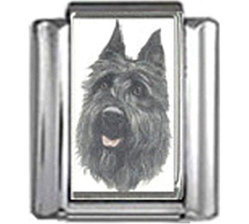 Stylysh Charms Bouvier DES Flandres Dog Photo Italian 9mm Link LinkDG098 ()