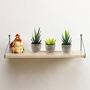 Yoodelife Artificial Faux Succulents Decorative Fake Cactus Aloe Cacti Plants Gray Pots, Realistic Looking Assortments 4