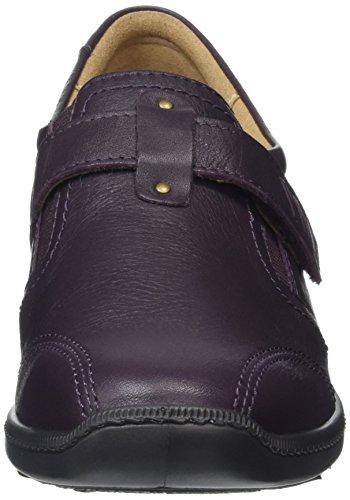 Oxford Chaussures Purple Femme Hotter Francis Violet Plum zW6TaF