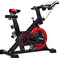 RY Casa Bicicleta de Ejercicio silenciosa Indoor Bicycle Sports ...