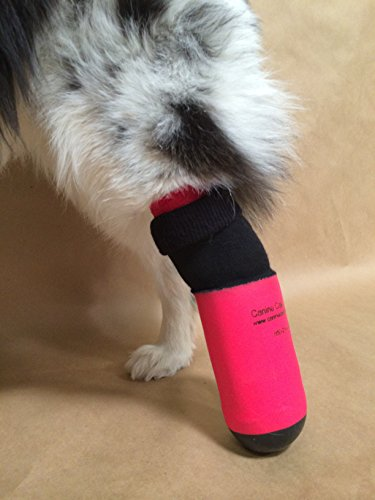 Canine Cast Covers Small Purple