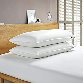 Serta 233 Thread Count White Feather Goose Down Fiber Back Sleeper 2 Pack Pillow, King