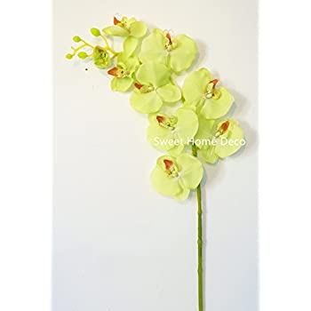 Sweet home deco 38 large phalaenopsis orchid for Decorate with flowers amazon