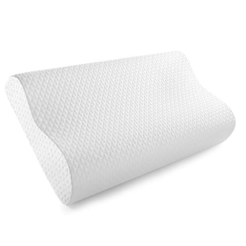 NewLife Memory Foam Pillow Bed Pillows for Sleeping-Dust Mite Resistant & Hypoallergenic with Pillowcase Queen Size Pillow