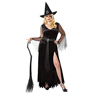 California Costumes Women's Size Rich Witch Plus Costume
