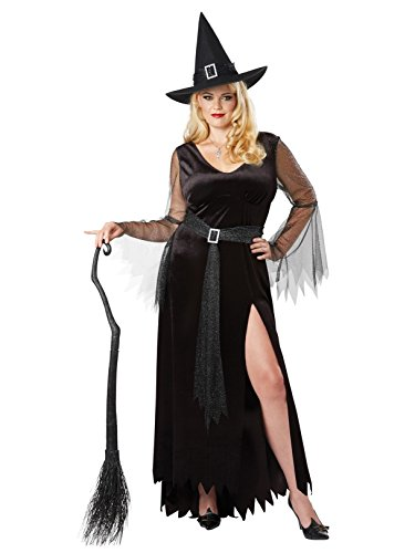 California Costumes Women's Size Rich Witch Adult Woman Plus Costume, Black/Silver, 1X Large]()