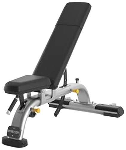 Precor DBR119 Commercial Series Multi-Adjustable Weight Bench - Silver Frame with Black Upholstery