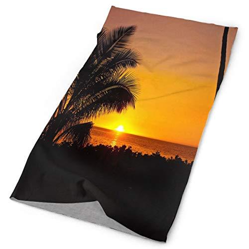 Lovexue Headband Beautiful Palm Trees Sunset Outdoor Scarf Mask Neck Gaiter Head Wrap Sweatband Sports Headwear