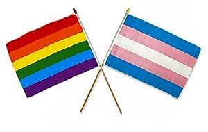 """12x 1812""""x18"""" Combo al por mayor Rainbow orgullo Gay bandera de & Stick transgénero"""