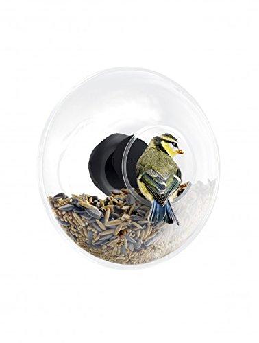 Solo Bird Feeder - Eva Solo 571048.0Window Bird Feeder Globe, 90ml, Transparent