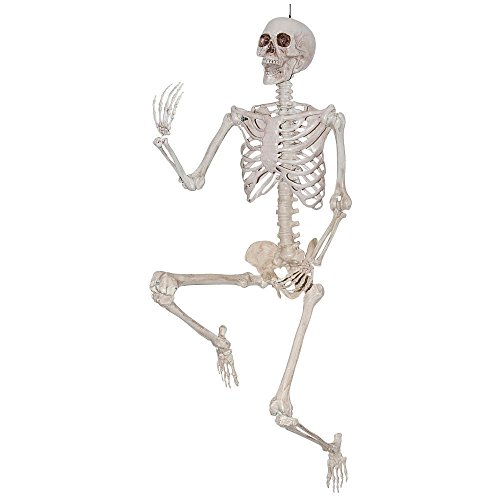 [Lifesize Pose and Hold Skeleton Halloween Decoration] (Skeleton Costume Pose)