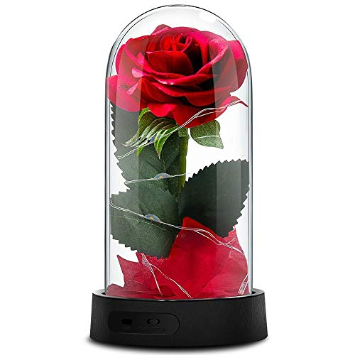 Beauty and The Beast Rose, Enchanted Red Silk Rose Lamp with 2 Mode LED Fairy String Lights, Best Gifts for Her for Valentines Day, Mothers Day, Anniversary, Wedding, Birthday -