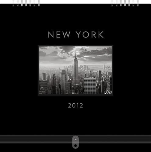 New York Gallery Series 2012 Calendar #62016