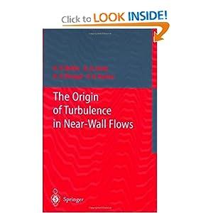 The Origin of Turbulence in Near-Wall Flows A.V. Boiko, Genrih R. Grek, A.V. Dovgal and Victor V. Kozlov