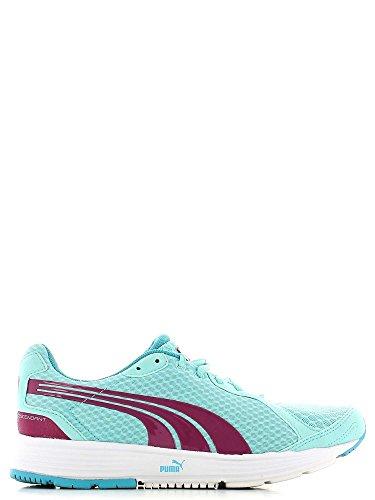 Puma Descendant V1.5 WnS - Zapatillas de Deportes de Exterior de tela mujer nd