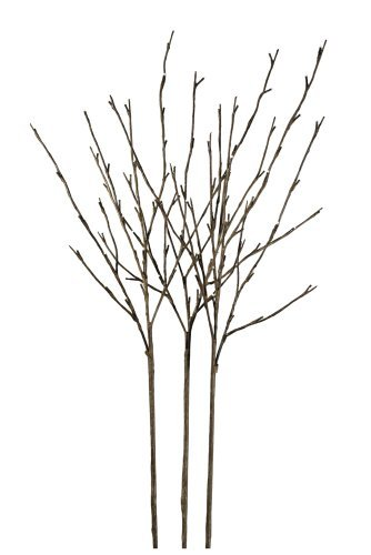 Floral Lights Lighted Willow Branch (set of 3 Branches) with 96 bulbs, 40 inches by Floral (Willow Branch 96 Lights)