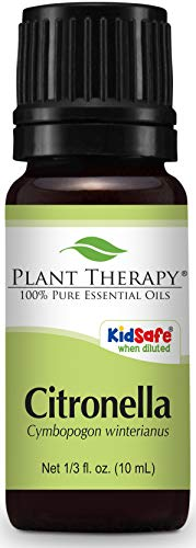 Plant Therapy Citronella Essential Oil 10 mL (1/3 oz) 100% Pure, Undiluted, Therapeutic Grade