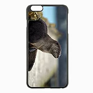 iPhone 6 Plus Black Hardshell Case 5.5inch - otter animal muzzle hair Desin Images Protector Back Cover