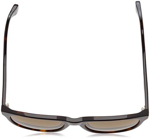 Polaroid Plus arrondis Wayfarer Style lunettes de soleil en Havane foncé Brun polarisé PLP0302 086 55 Dark Brown