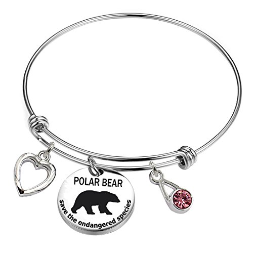 (YOYONY Polar Bears-Save The Endangered Species Series-Inspirational/Love/Positive Quotes/Thankful/Beauty/Praise/Religious/Meaningful Charm Bracelets. (Polar Bear-Save The Endangered Species))