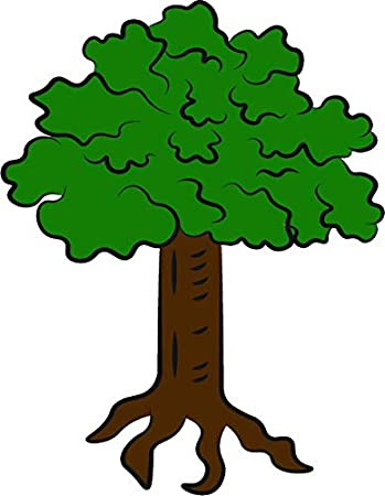 Amazon Com Beautiful Green Trees Nature Park Plants Cartoon Vinyl Sticker 2 Tall Roots Automotive Here presented 52+ cartoon tree drawing images for free to download, print or share. plants cartoon vinyl sticker