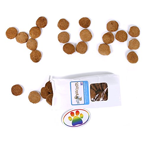 Homemade Natural Bacon Dog Treats - Made in the USA Pet Biscuits