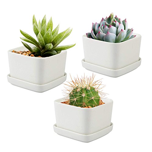 Office Outdoor Console Table - Ceramic Pots for Cactus, Ceramic Pots for Succulents - Set of 3 White Planters with Draining Tray: 2.5