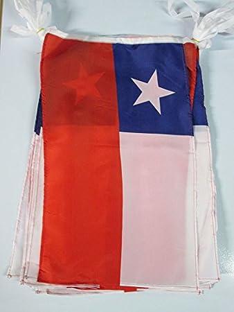 AZ FLAG Guirnalda 12 Metros 20 Banderas de Chile 45x30cm - Bandera CHILENA 30 x 45 cm - BANDERINES: Amazon.es: Jardín
