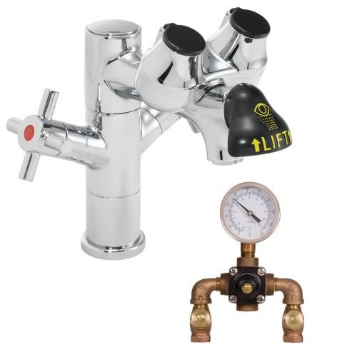 Speakman SEF-1850-TW Eyesaver Eye Wash Faucet Combination Single Post Laboratory Faucet with Thermostatic Mixing Valve by Speakman