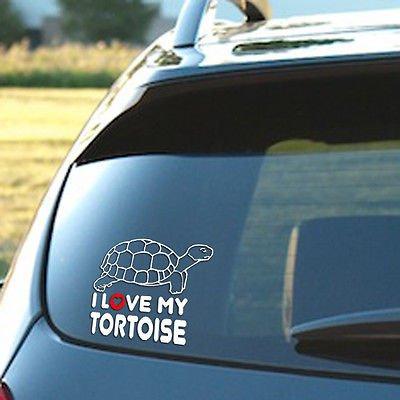 【60%OFF】 I Love My Tortoise